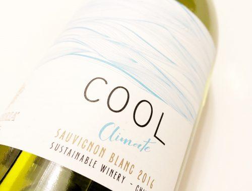 Vina Echeverria Cool Climate Sauvignon Blanc