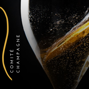 become a champagne expert